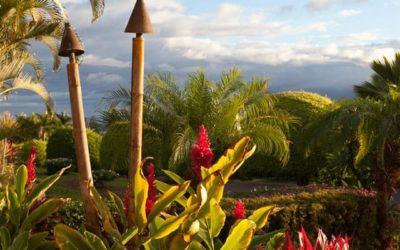 Property Spotlight: Kaanapali Alii Luxury Condo for Sale