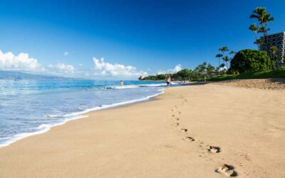 Your Moving to Hawaii Checklist